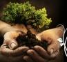 WILDS & GREENS HERITAGE PACKAGE